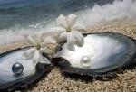 Le perle naturali perle coltivate e perle Tahiti perle di fiume