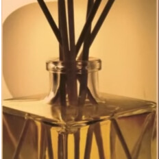 Profumatori Per Ambienti Naturali.Profumatori Per Ambienti Con Bastoncini Naturali Desja Parfum