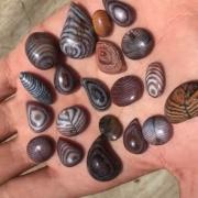 La pietra diaspro fossile - usi e benefici